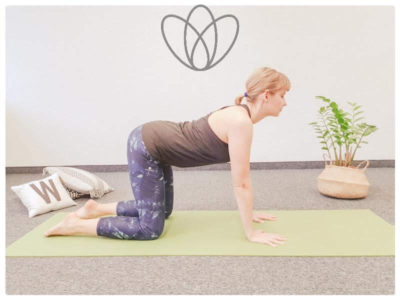 yogamaya-8-yoga-uebungen-gegen-den-stillruecken-kuh