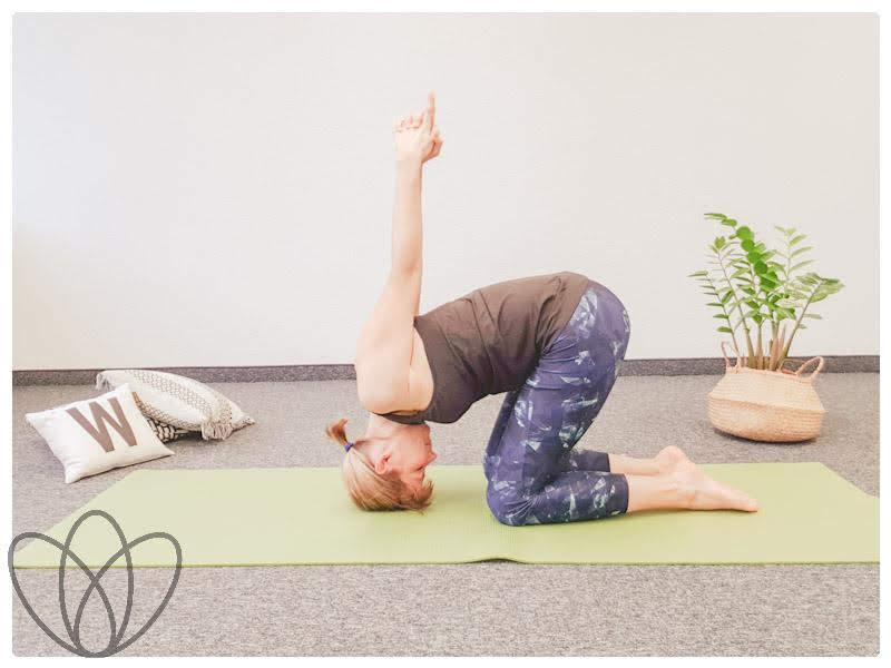 yogamaya-8-yoga-uebungen-gegen-den-stillruecken-hase