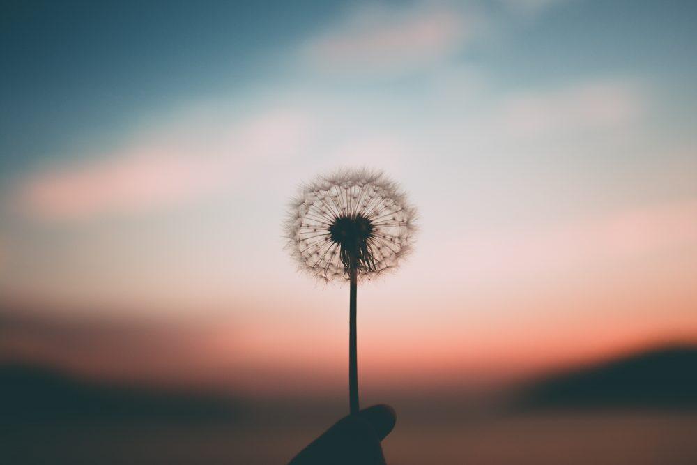 6 Anregungen für ein erfülltes und achtsames Leben