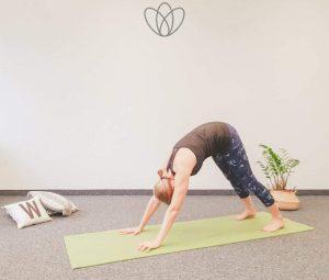 """Wirkungen der Yogaübung """"Hund"""" (Adhomukhashavasana)"""