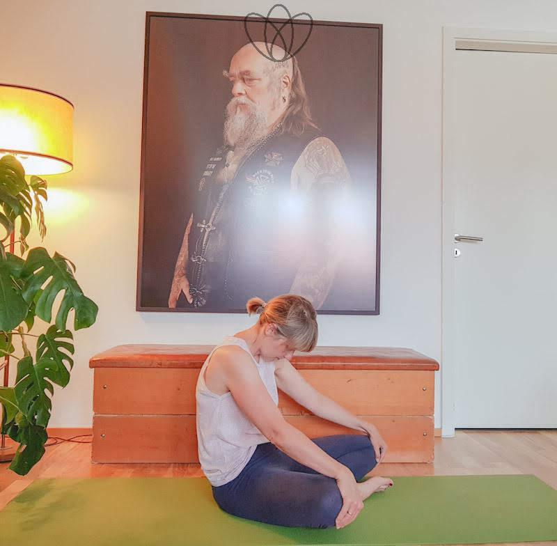 yogamaya_kamelritt_II