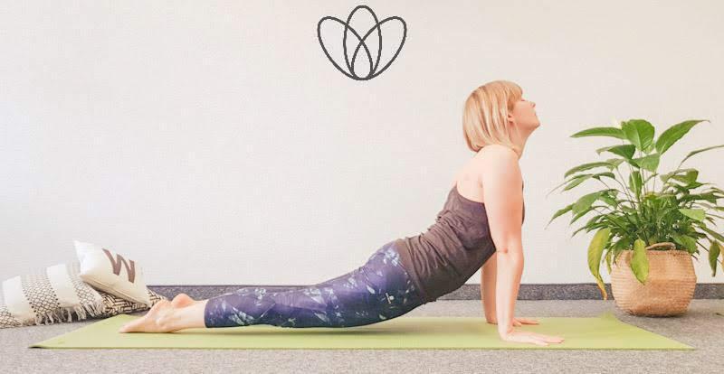 yogamaya yoga flacher Bauch heraufschauender Hund